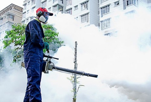 mosquito fogging singapore